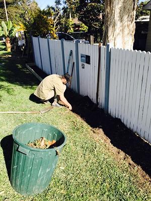 garden-maintenance-avalon-ccandm-landscapes-adding-privacy-hedge