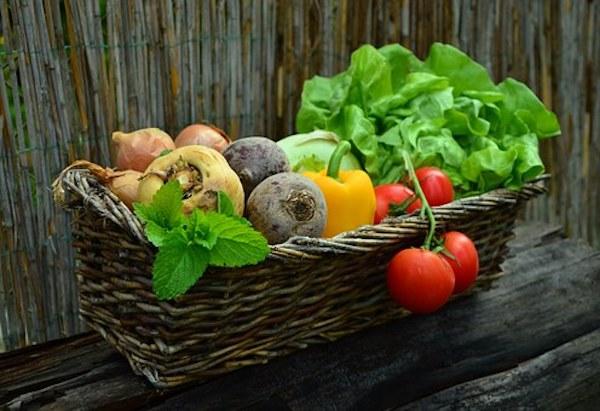 How to create the ultimate edible garden